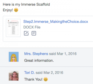 Scaffold feedback - Immerse